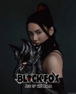 黑狐:忍者時代全集觀看